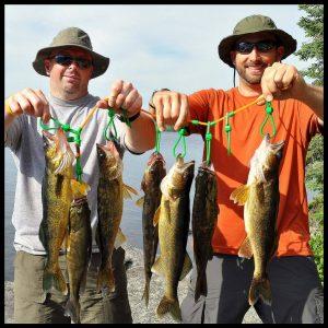 guided bwca fishing canoe trips